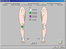 LSW Lower Extremity Evaluation and Impairment Software